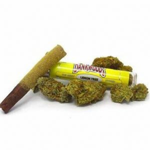 Lemon Tree Dankwoods for Sale